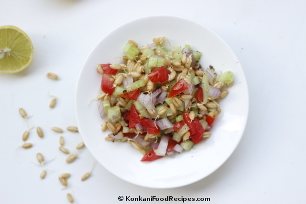 Sprouted Whole Wheat Salad Recipe